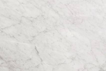 Bianco Carrara White Marble 1